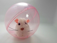 Children's toys will walk scroll hamsters electric toy