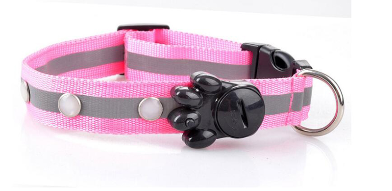 dog collar for small dogs (5)