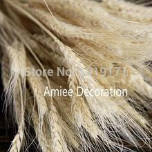 Christmas Natural 100pcs Wedding Home Office Decor Artificial Wheat decorative Flower Fake Foliage Dried Branch Green 3 Color f2