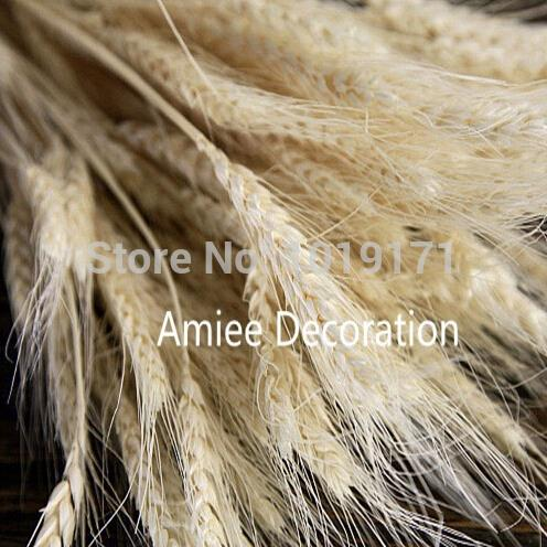Christmas Natural 100pcs Wedding Home Office Decor Artificial Wheat decorative Flower Fake Foliage Dried Branch Green 3 Color f2(China)