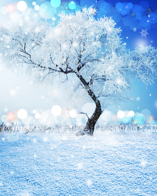 Customize snow bokeh photography backdrops 10ft  vinyl digital cloth for photo studio background L-864<br>