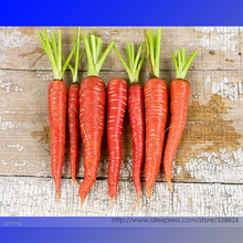 Atomic Red Carrot Organic Seeds, Professional Pack, 100 Seeds / Pack, non-GMO Vegetables #NF944
