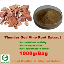 1000g Thunder God Vine Root Tripterygium Wilfordii 20:1 Extract Powder(China)