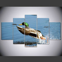 DAFENJINGMO ARTS 5 panel Modern hd Art print canvas Take off the mallard art wall framed paintings for living room wall picture(China)