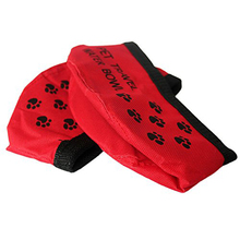 Boutique  Dog Pet Travel Collapsible Food Water Bowls,red
