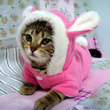 Winter Cat Clothes Costume Clothes For Cats Hoodies Cute Rabbit Cat Coat Puppy Outfit Fleece Warm Pet Clothing for Cats 30F1(China)