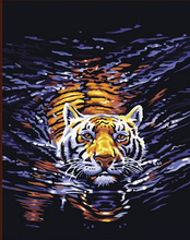 Coloring by numbers Digital Oil Painting By Numbers Modern Abstract Tiger Pictures Canvas Wall art  Home Modular pictures  291