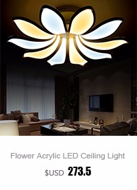 Living Room Ceiling Lamp (5)
