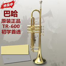 Musical Instruments Trumpet instrument Baja trumpet TR-600 down B tone Beginner Band Students first choice trumpet(China)