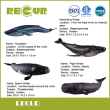 New 4 pcs/set Recur Toys Whale Series Highly Detail PVC Hand Painted Marine life Model Collection Gift For Kids' Early Education