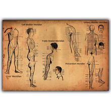 Human Science Human Body Organs Meridian Poster Medical Knowledge Silk Poster Printing, Custom Decorated Hospital QT106(China)