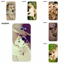 Exunton TPU Design Phone Labrador Dogs Puppies For Galaxy Alpha Core Prime Note 2 3 4 5 S3 S4 S5 S6 S7 S8 mini edge Plus(China)