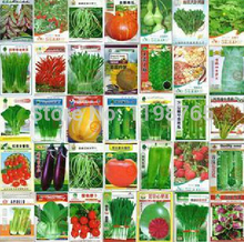 Free Shipping 500pcs 5 kinds Eggplant Carrot Cucumber Pepper Tomato Vegetable seed family potted balcony garden(China)