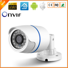 H.264 FULL HD 1080P 2.0 Megapixel Security IP Camera HI3518E ABS Plastic Outdoor Camera IP 1080P DC 12V 48V PoE Optional