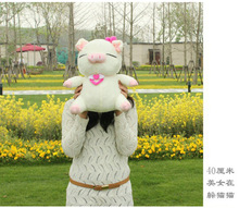 Valentine's Day present about 40cm lovely pig plush toy,soft pillow, birthday gift t4670(China)