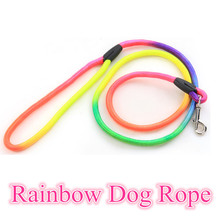 Colorful Nylon Rainbow dog rope Pet Leash Puppy Small Breed Cordage dog chain cat rope dog lead doggy outdoor pulling rope lead