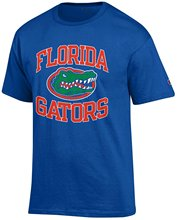 2017 Short Tees 100% Cotton Classic Florida Gators Mens Curved Logo T-Shirt Base Shirt Free Shipping