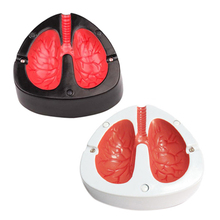 Novelty Design Lung Shape Cough Scream Sound Quit Smoke Stop Smoking Ashtrays(China)