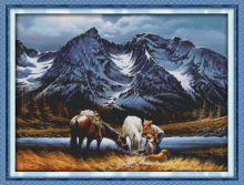 DMC Standard Cross Stitch Kits DIY Needlework Romances under the snow mountains Sets For Embroidery Cross Stitching Home Decor