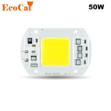 50W 220V COB LED Chip Real Power LED Lamp Bulb Input IP65 Smart IC Fit For DIY Outdoor LED Flood Light