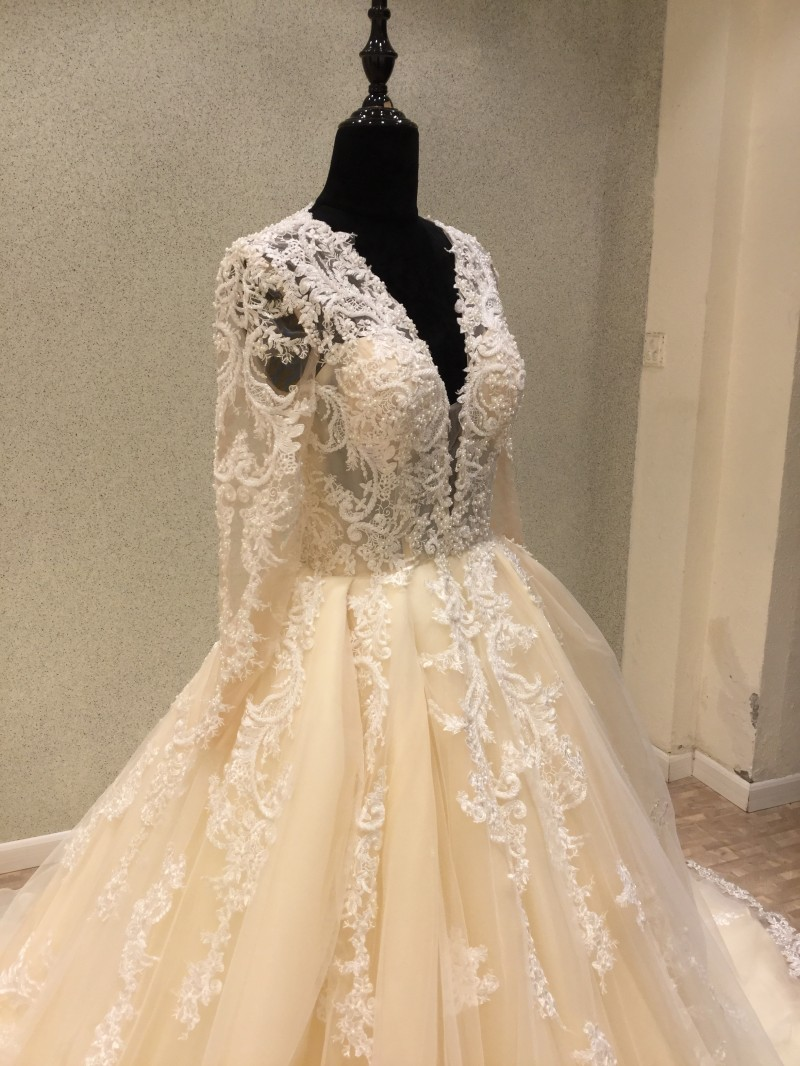 New Trend 2018 Luxury Wedding Dresses A-line Light Champagne Vintage Lace  Bride Wedding Gowns Sexy Deep V-neck Dress Bride  648735fc1218