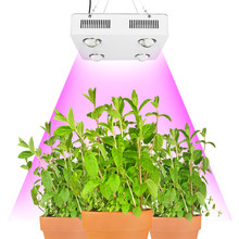 CF Grow 300W 600W COB LED Grow Light Full Spectrum Indoor Hydroponic Greenhouse Plant Growth Lighting Replace UFO Growing Lamp(China)
