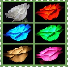 Free shipping,Wedding magic,Lighting Rose(Five Color) Charging Version/Magic trick,Mentalism,stage magic,comedy,close up