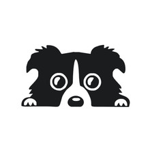 Border Collie DOG Personality Reflective Glass Rear Pet Car Sticker Black Silver  auto motorcycle vinyl decoration for focus 2