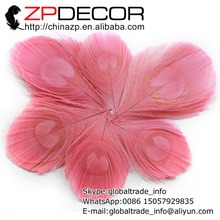 ZPDECOR 50pcs/lot Beautiful and Vibrant Handwork Trimmed Baby Pink Peacock Tail Eye Feathers For Craft Art