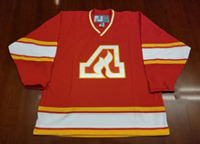 Atlanta Flames Vintage Hockey Jersey Embroidery Stitched Customize any number and name Jerseys(China)