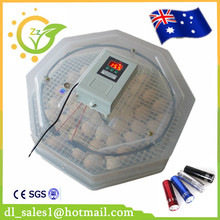 Hottest Selling 60 Digital Home Use Egg Incubator High Hatcher Rate(China)