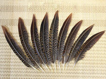 AA 100pcs 10-15cm / 4-6inch natural real golden pheasant tail plumage craft feather hot bulk sale for jewelery making
