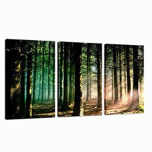 3 Panel Summer Forest Canvas Printing Wall Art - Morning Sunrise Home and Office Decor Frame Canvas Artwork