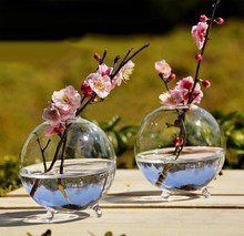 Hot Sell Clear Glass Flower Planter Vase Terrarium Container Home Garden Ball Decor(China)