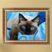 Home Decor DIY 5D Diamond Embroidery Gray Cat Blue Eyes Painting Cross Stitch Needlework Mosaic
