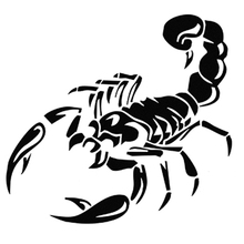 Cool Scorpion Car Sticker High Quality  Waterproof Auto Decals for Head stocke Engine Hood and backup tire sticker