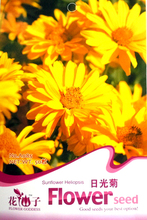 Buy 2 Get 1!(Can accumulate ) 1 Pack 50 Seed Bright yellow sunflower heliopsis A085