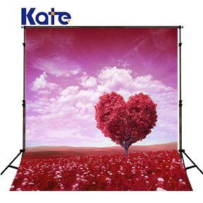 KATE Photography Backdrops 10x10ft Pastel Pink Background Romantic Backgrounds Clouds Photography Wedding Backdrops for Studio<br>