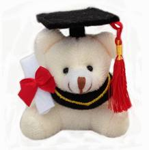 6 Pcs/lot 7cm Graduation Bear Cap&Tassel, Dr. Bear Plush Kids Toy,Graduation Gift,Stuffed Soft Teddy Bear Doll,Gift For Friend(China)