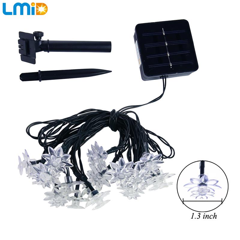 Solar LED Light (1)