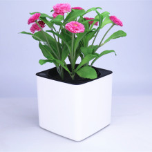 Four colour Margic square  lazy self absorption water creative personalized  porcelain plastic flower pot for graden plant