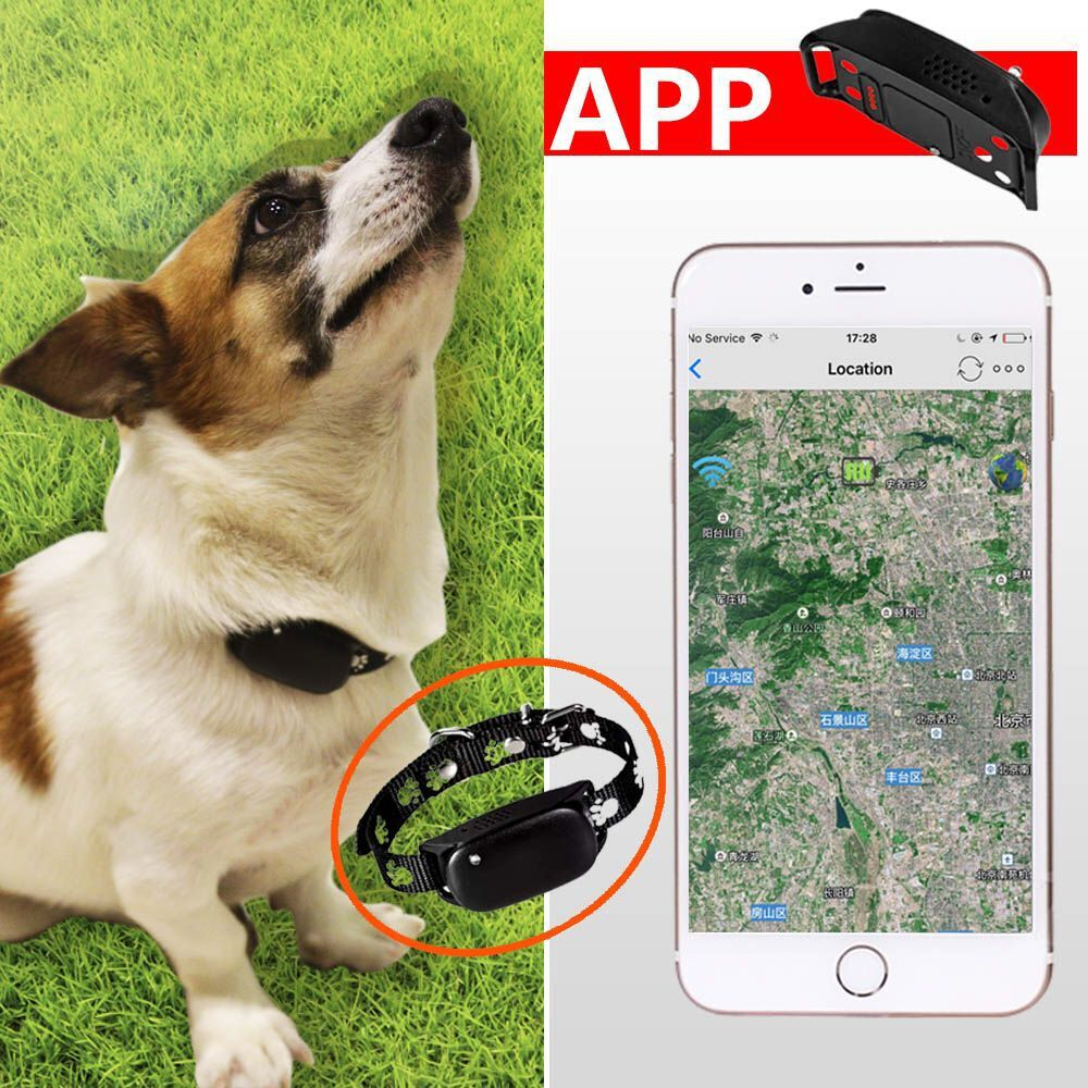 cheapest Pet positioning and anti drop device gift, GPS+LBS, Quad-band, Two way talk, Free APP/IE Server<br>