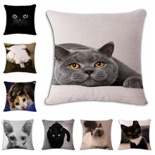 Show MOE cute angry cat Cushion(No Filler)  Polyester Family affection Sofa Car Seat family Home Decorative Throw Pillow