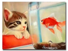 Diamond embroidery diy Cat ornamental fish diamond painting Kit for embroidery with beads picture of rhinestones home decoration(China)