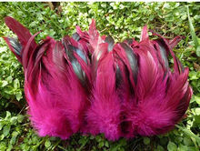 Cking Facotry High quality Dyed Hot pink 4-6inch half bronze coque feather strungs rolls strips for cloth accessory 1kgs/lot(China)