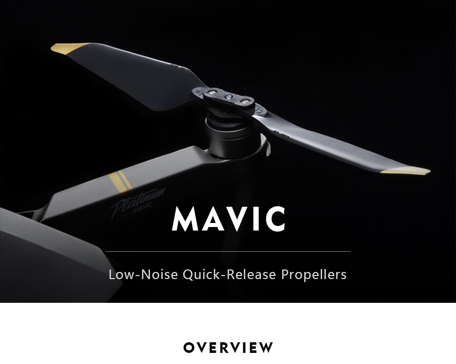 Mavic-_01
