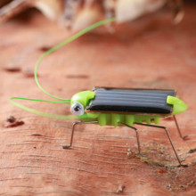 Solar Grasshopper Educational Creative Solar Toys DIY Kids Toys for Children Gifts(China)