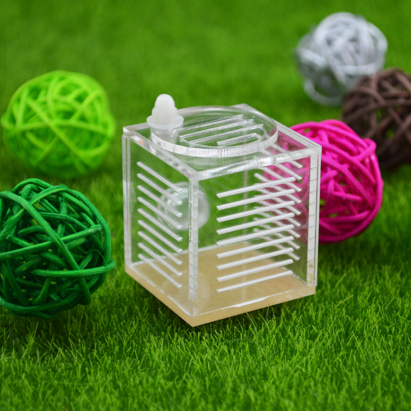 square ant farm food feeder,food feeding area for ant nest ,ant farm acryl or insect nests villa pet mania for house ants