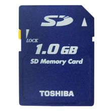 Toshiba 1GB SD Memory CARD 1GB SD Card With Free Card Case