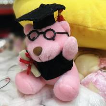 10 Plush stuffed mini graduation teddy bear doctor Dr.bear student college graduation gift 2pc Baby birthday gift